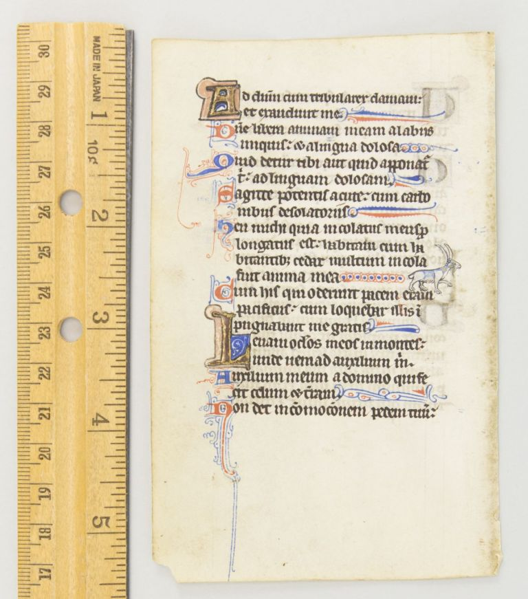 FROM A. BOOK OF HOURS IN LATIN AN ILLUMINATED VELLUM MANUSCRIPT LEAF WITH A. CHARMING LONG-HORNED BEAST.