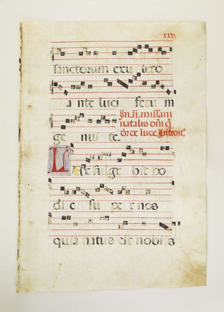 FROM AN ANTIPHONER IN LATIN. OFFERED INDIVIDUALLY VERY LARGE DECORATED VELLUM MANUSCRIPT LEAVES.
