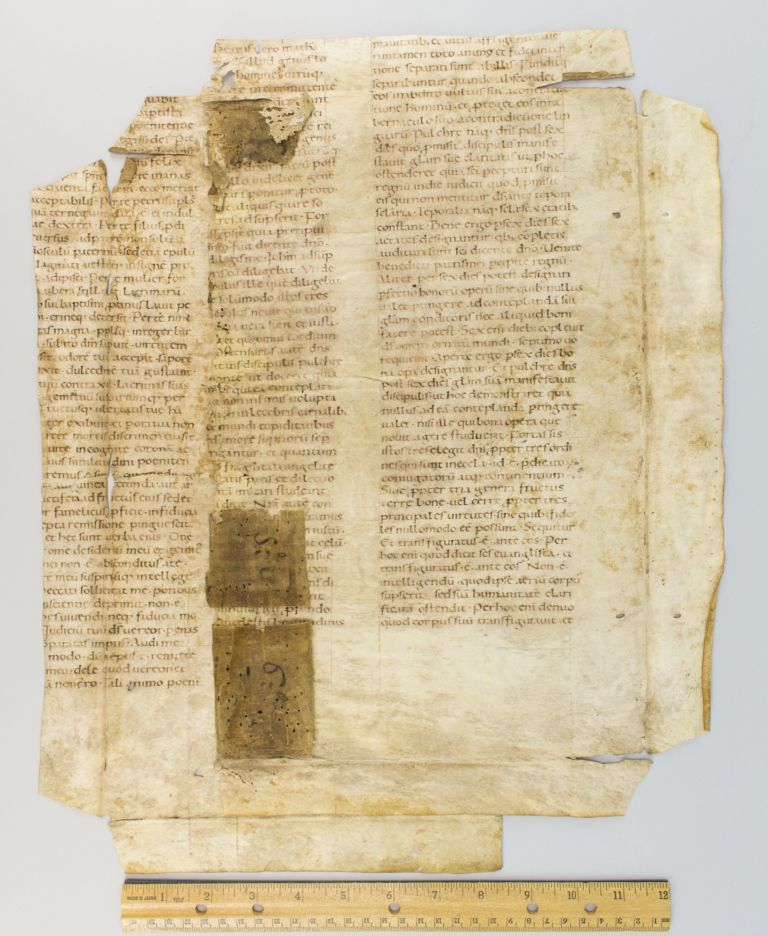 TEXT FROM A SERMON ON PENITENCE. TWO SUBSTANTIAL FRAGMENTS, OFFERED SEPARATELY OF VAST LEAVES FROM AN EARLY VELLUM MANUSCRIPT HOMILETIC WORK IN LATIN.