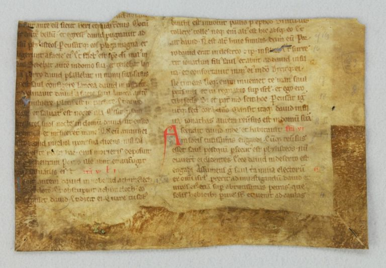 TEXT FROM HOMILIES BY SAINT JOHN CHRYSOSTOM AND SAINT GREGORY. HALF OF AN EARLY VELLUM MANUSCRIPT LEAF FROM A. HOMILIARY IN LATIN.