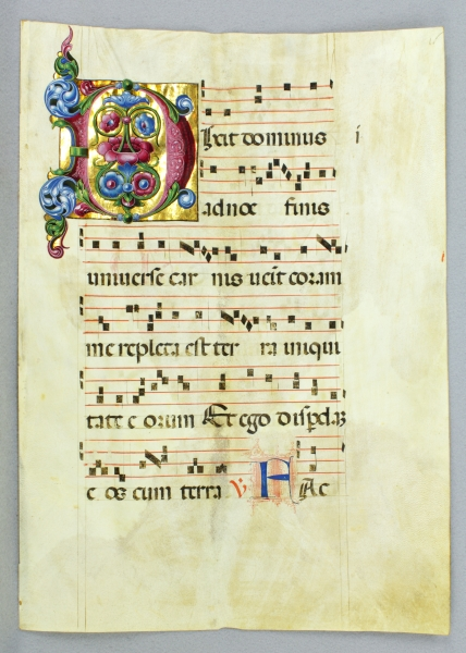 MANY WITH GORGEOUS ILLUMINATION VELLUM MANUSCRIPT LEAVES, FROM AN EXTREMELY LARGE ANTIPHONER IN LATIN.