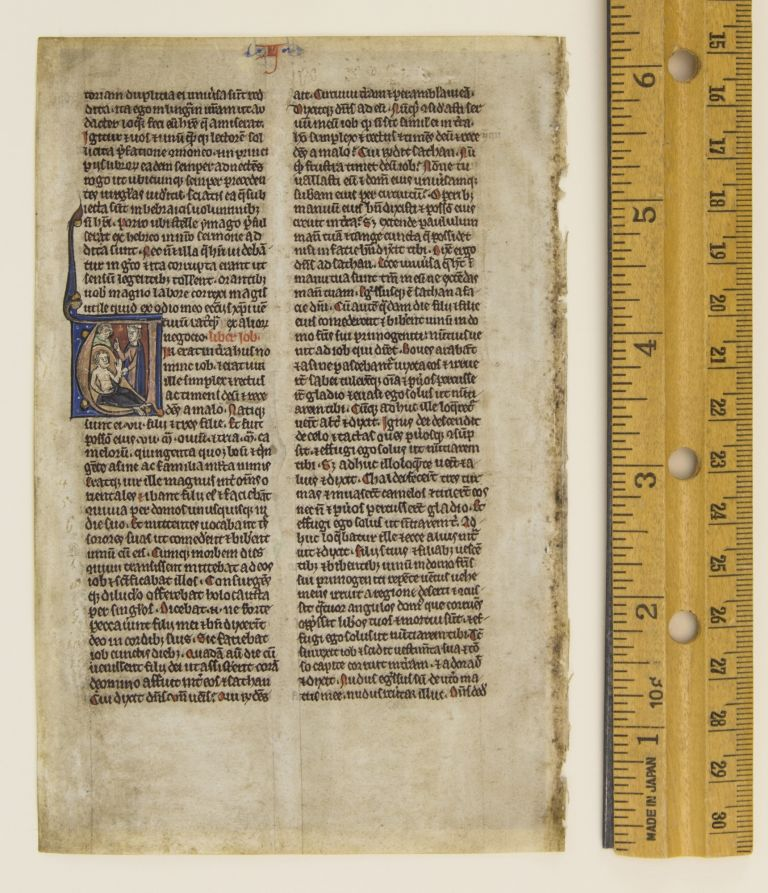TEXT FROM THE OPENING OF JOB. FROM A. BIBLE IN LATIN AN ILLUMINATED VELLUM MANUSCRIPT LEAF WITH AN HISTORIATED INITIAL.