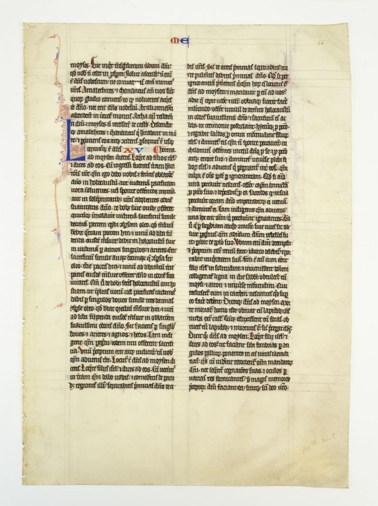 TEXT FROM EXODUS, LEVITICUS, NUMBERS, AND JOSHUA. OFFERED INDIVIDUALLY VELLUM MANUSCRIPT LEAVES, FROM A. VERY LARGE BIBLE IN LATIN.