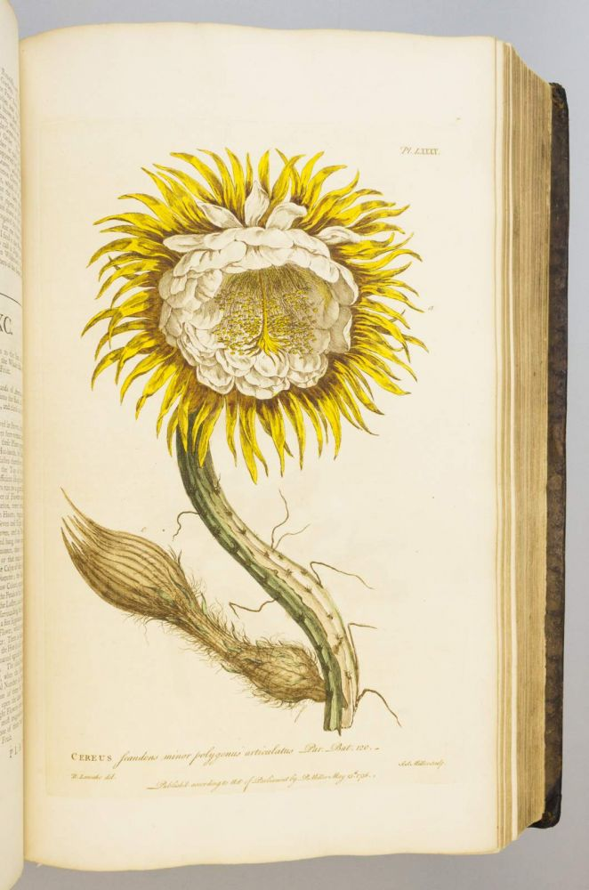 FIGURES OF THE MOST BEAUTIFUL, USEFUL, AND UNCOMMON PLANTS DESCRIBED IN THE GARDENER'S DICTIONARY. PHILIP MILLER.