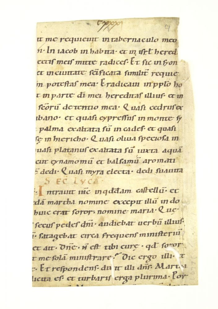 WITH A READING FROM LUKE 10:38-42 FOR THE FEAST OF ST. MARTHA (JULY 29). A VELLUM MANUSCRIPT FRAGMENT FROM AN EARLY LECTIONARY IN LATIN.