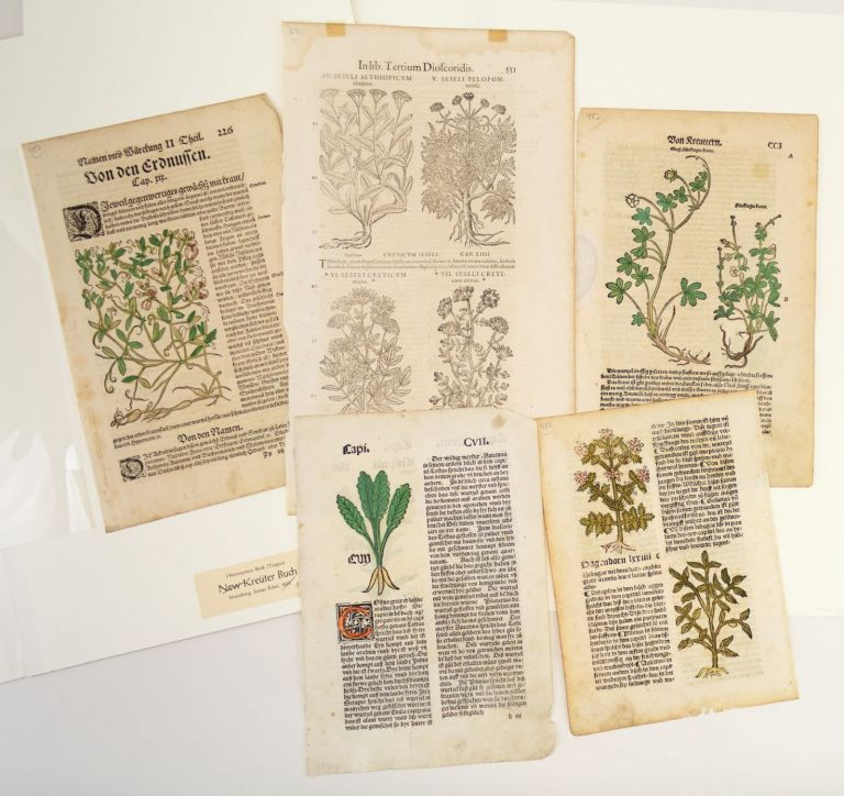 INCLUDING TWO INCUNABLES A COLLECTION OF FIVE LEAVES FROM EARLY PRINTED HERBALS, OFFERED AS A. GROUP.