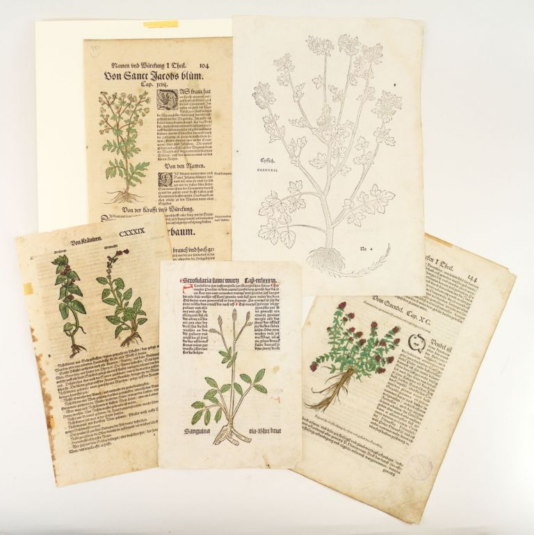 INCLUDING ONE INCUNABLE A COLLECTION OF FIVE LEAVES FROM EARLY PRINTED HERBALS, OFFERED AS A. GROUP.