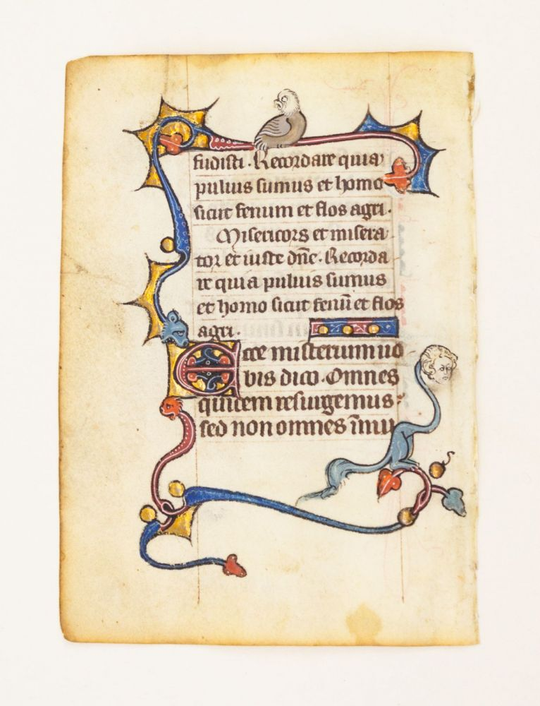 FROM A SMALL PSALTER-HOURS IN LATIN, WITH IMMENSELY CHARMING MARGINALIA. OFFERED INDIVIDUALLY VELLUM MANUSCRIPT LEAVES.
