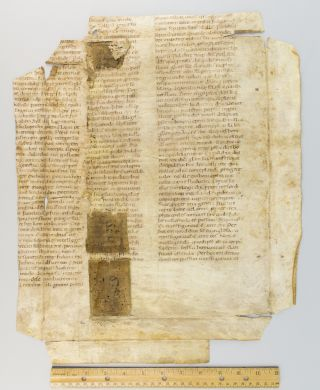 TEXT FROM A SERMON ON PENITENCE. TWO SUBSTANTIAL FRAGMENTS OF VAST LEAVES FROM AN EARLY VELLUM MANUSCRIPT HOMILETIC WORK IN LATIN, OFFERED SEPARATELY.