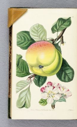 POMOLOGIA BRITANNICA; OR, FIGURES AND DESCRIPTIONS OF THE MOST IMPORTANT VARIETIES OF FRUIT...