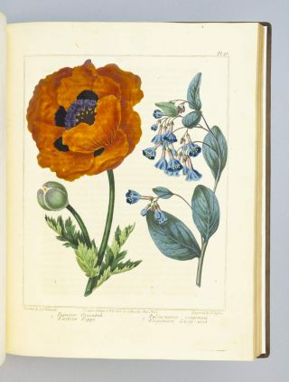 THE NEW BOTANIC GARDEN, ILLUSTRATED WITH ONE HUNDRED AND THIRTY-THREE PLANTS, ENGRAVED BY SANSOM, FROM THE ORIGINAL PICTURES, AND COLOURED WITH THE GREATEST EXACTNESS FROM DRAWINGS BY SYDENHAM EDWARDS.