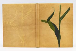 AN HERBARIUM FOR THE FAIR. BINDINGS - DENISE LUBETT, THOMAS FASSAM