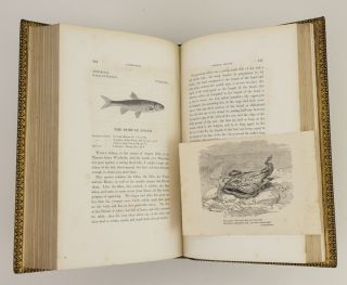 A HISTORY OF BRITISH FISHES [with SUPPLEMENT].